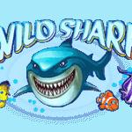 Play Wild Shark bitcoin slot for free