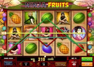 ninjafruits