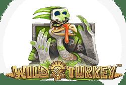 Play Wild Turkey Bitcoin Slot for free