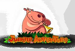 Play Jungle Adventure bitcoin slot for free