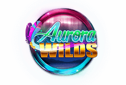 Microgaming Aurora Wilds logo